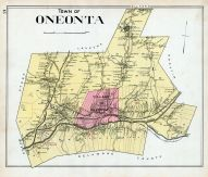 Oneonta Town, Otsego County 1903